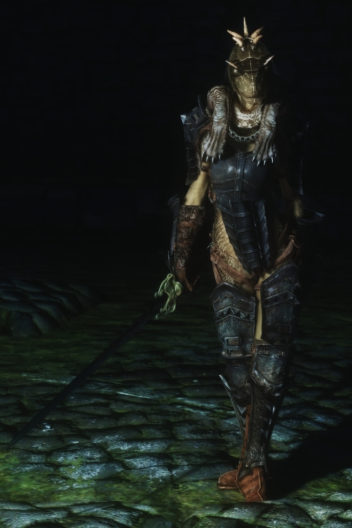 Marsh Brothers What Armor Suits An Argonian Well Skyrimmods