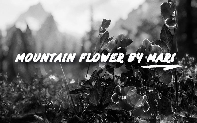 Mountain flower by mari se at skyrim special edition nexus mods first of all this is not my mod it belongs to artbymari this is a port of her amazing and beautiful mod mountain flowers by mari mightylinksfo