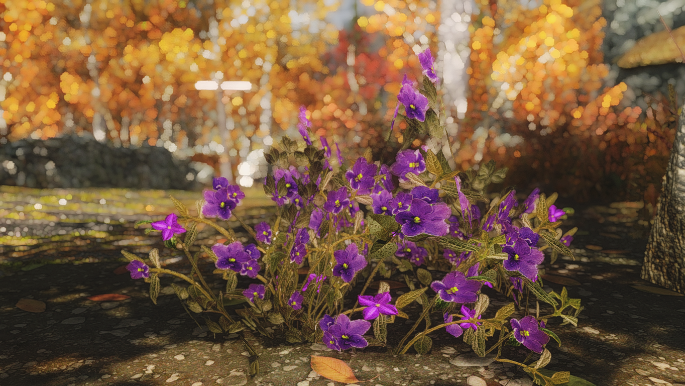 Mountain Flower By Mari At Skyrim Nexus Mods And Community