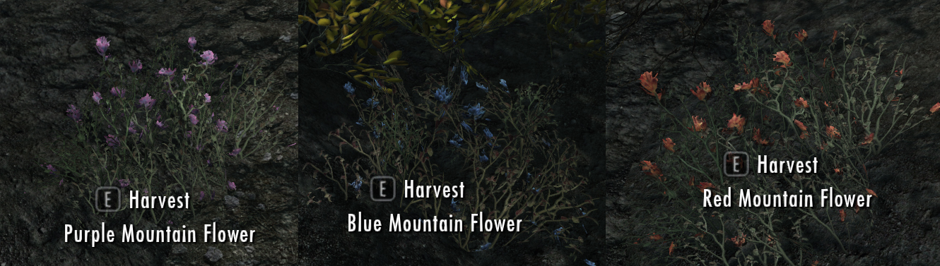Skyrim red mountain flower best flower 2017 yellow mountain flower another orc in skyrim mightylinksfo Images