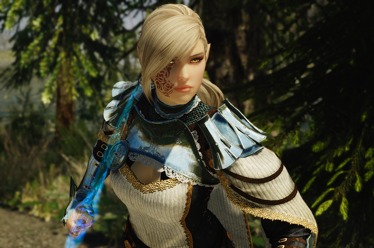 High elf finished at Skyrim Special Edition Nexus - Mods