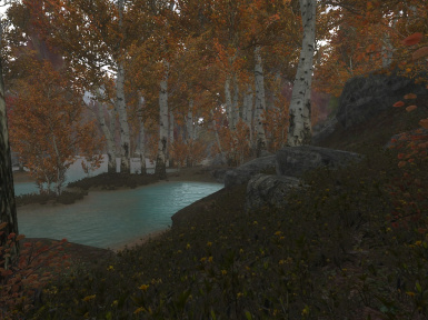 Without ENB