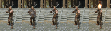 Use 2H Weapons with Shields, Weapons, Spells, Torches