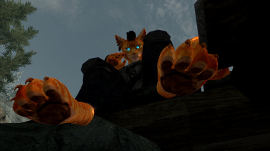 Bug of the feet of the Khajiits fixed (all versions)