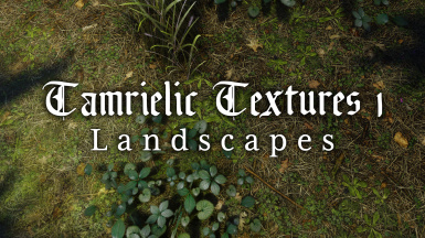 Tamrielic Textures 1 - Landscapes