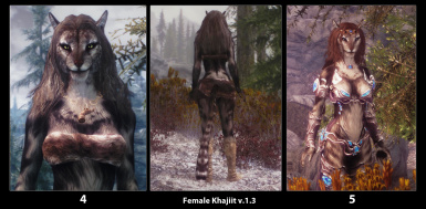 Khajiit Female hair chart v_1_3