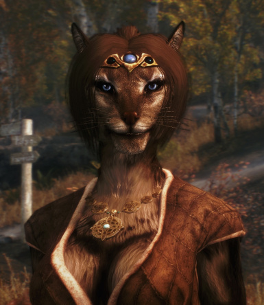 Ponytail for Khajiit coming next update