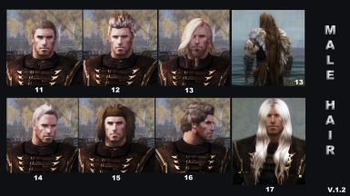 Hair chart Male hairs v_1_2