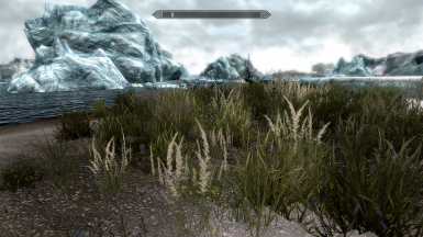Winterhold shores of the Sea of Ghosts