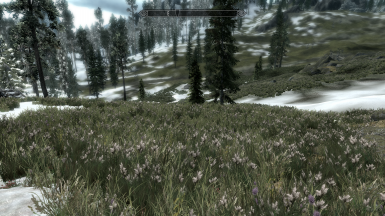 The Pale tundra