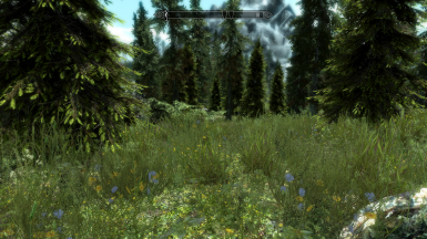 Falkreath Hold forests