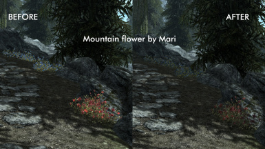 Comparison with Mari's mod installed