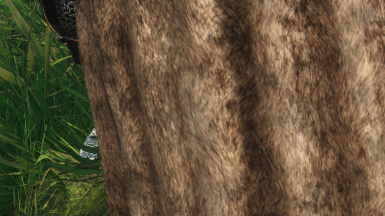 High Resolution Fur Pattern