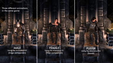 Three different animations thanks to FNIS and DAR