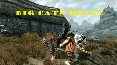 Big Cats House