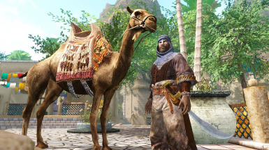 Camel in Hammerfell by lilplayboy98