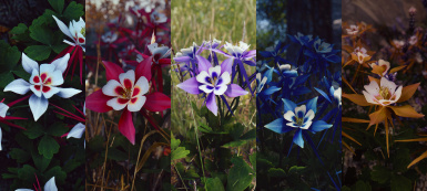 Cathedral - 3D Mountain Flowers LE