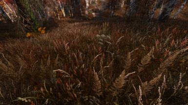 Fantastic grasses and where to find them - a Skyrim grass mod