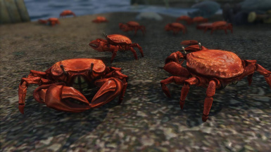 Mating Crabs- Mihail Monsters and Animals (mihail oldrim mod)