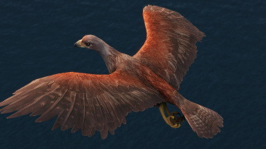 Hawk Replacer- Mihail Monsters and Animals (mihail oldrim mod)