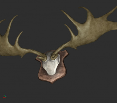 Vanilla color mounted antlers