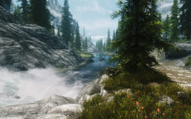 STEP with Wilds ENB