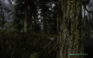 Installed the HD Texture Pack and got and FPS increase from default install with this
