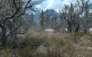 Skyrim Flora Overhaul at Skyrim Nexus - mods and community