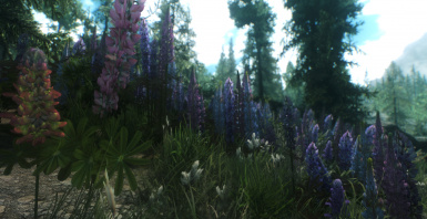 183 with enb