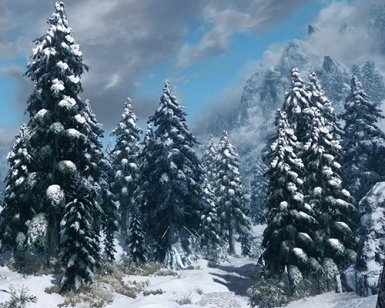 heavy snow pines v06