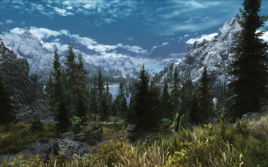 Diverse Trees Expanded v10
