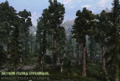 SFO diverse trees expanded v11