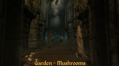 Garaden Mushrooms