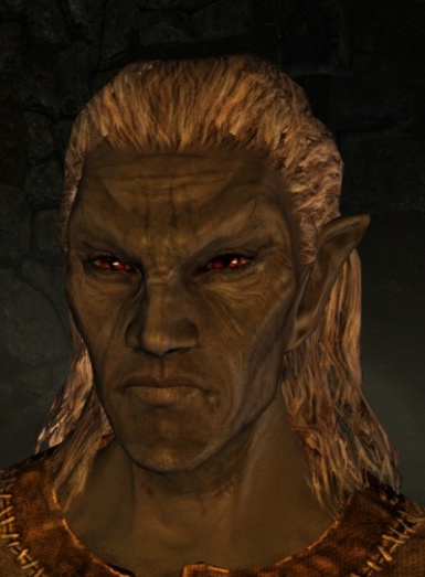 Dirden the Dark Elf