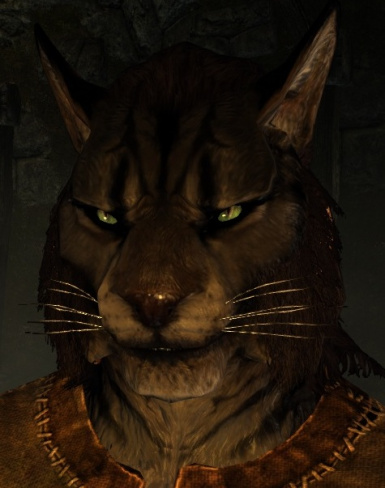 Jarrwl the Khajiit