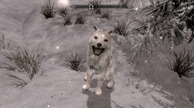 Ghost in Windhelm