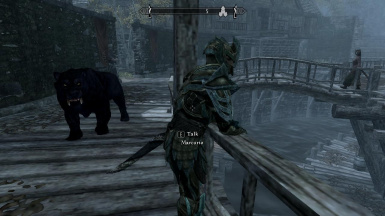 Marcurio hangs out in Riften