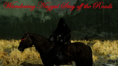Wandering Nazgul Stay off the Road