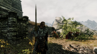 Follower Ready to fight has solitude guards hide from the Nazgul