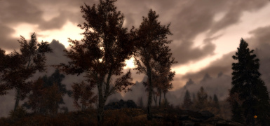 Riften Dawn