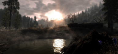 Swamp Sunset 1