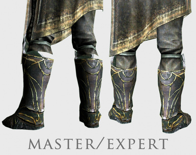 master and expert robes before and after
