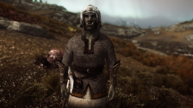 Viking Chainmail Armor at Skyrim Nexus - mods and community | 670 x 376 jpeg 27kB