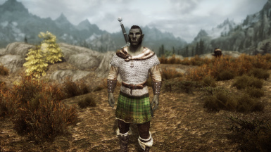 Viking Chainmail Armor at Skyrim Nexus - mods and community | 670 x 376 jpeg 39kB