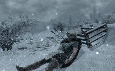 Get Snowy at Skyrim Nexus - mods and community
