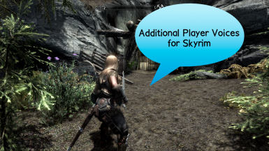 Additional Player Voices for Skyrim