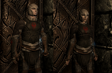 Apotheus Light Armor -- Show Your Allegiance