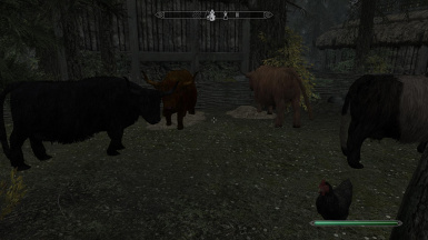 Cows with Automatic Variants 2