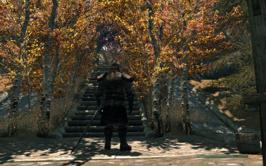 Solitude trees and Whiterun forest