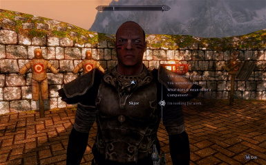 Companions More Radiant Quests at Skyrim Nexus - mods and